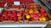 June_Heirloom_Tomatoes