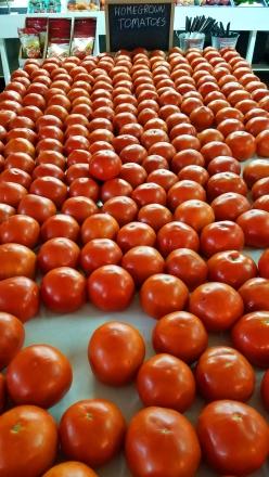 Tomato_Table2