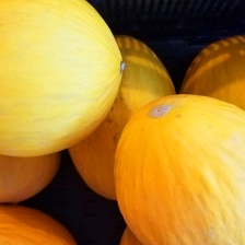 Canary_Melons