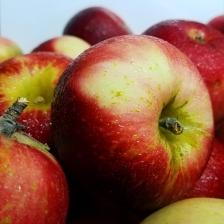 AppleCloseUp