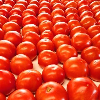 TomatoesWide